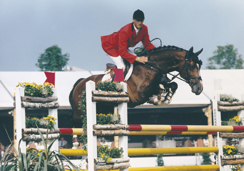 HEARTBREAKER | Horsetelex
