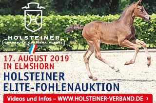Welcome at HorseTelex | Horsetelex